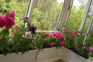 Цветочная плантация на балконе
