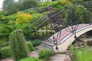Сорт вертикального можжевельника в ландшафтном дизайне