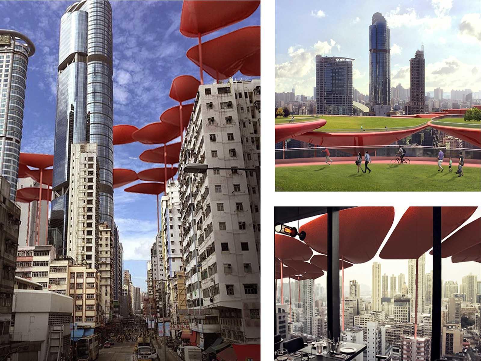 Озеленение было сделано над Гонконгом, теперь в городе появится качественный парк, несмотря на высокую густоту населения