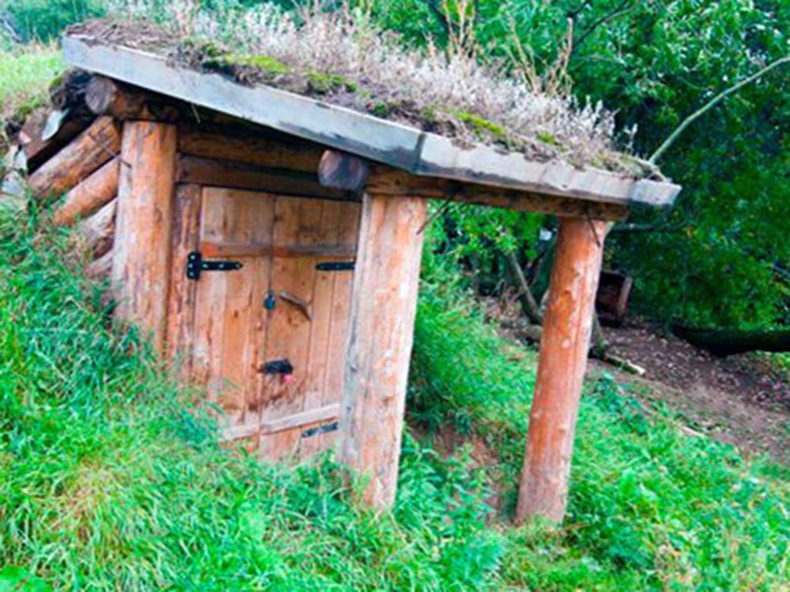Садим мох на крыше самодельного дачного погреба