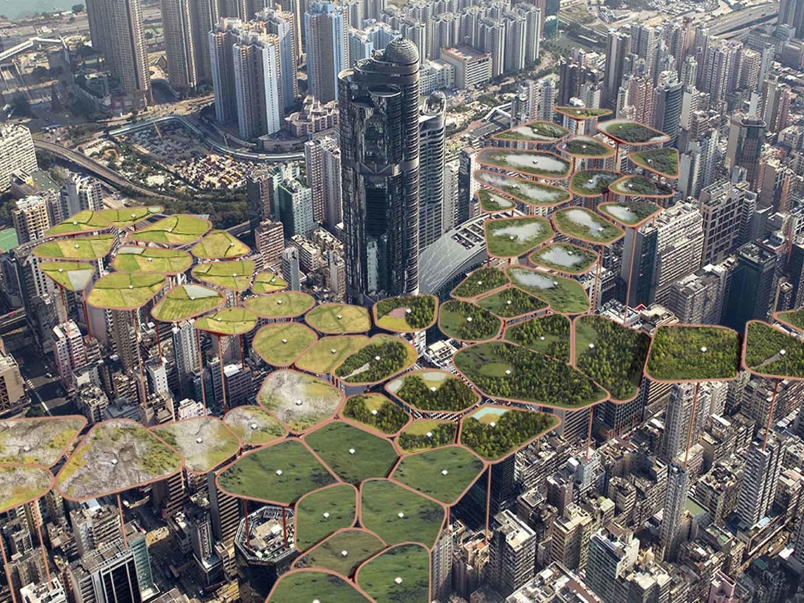 В Гонконге сделали первый масштабный эко-проект в небе над городом: подвесной парк с насаждениями