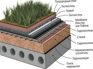 Структура растительной инверсионной кровли
