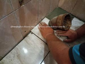 Укладка кусочков кафеля своими руками