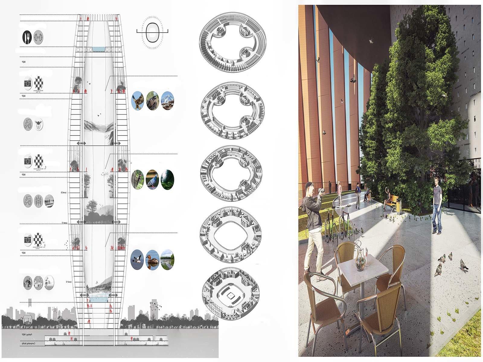 Планируется строительство первого птичьего небоскреба в Тегеране