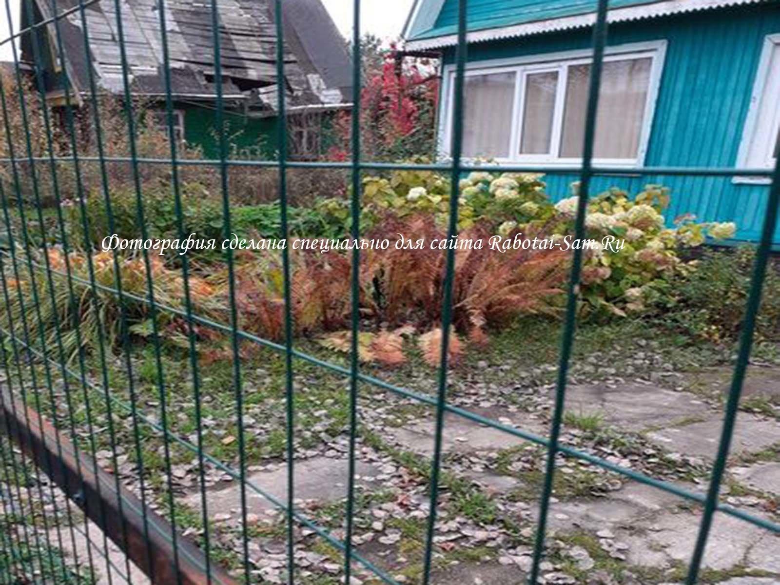 Простой забор из металлической сетки на загородном участке