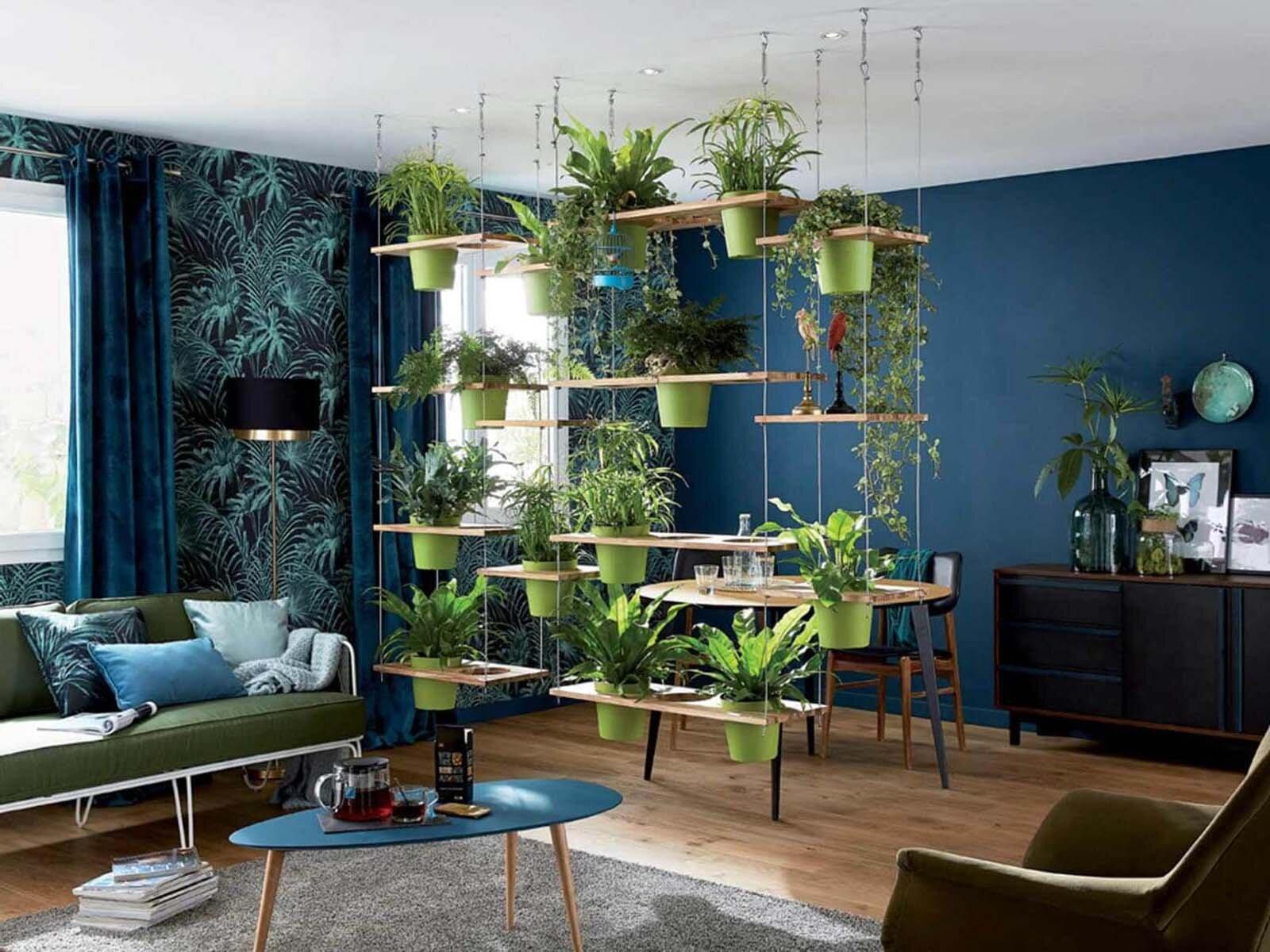 Живая изгородь для зонирования комнаты